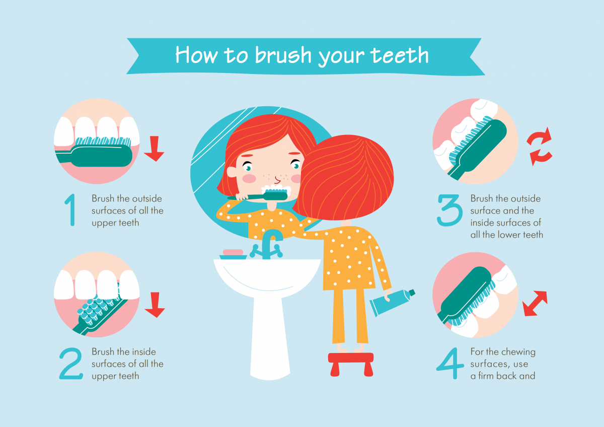 how to brush you teeth
